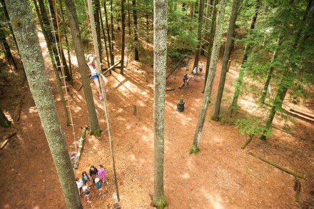 tree-climb-ropes-course